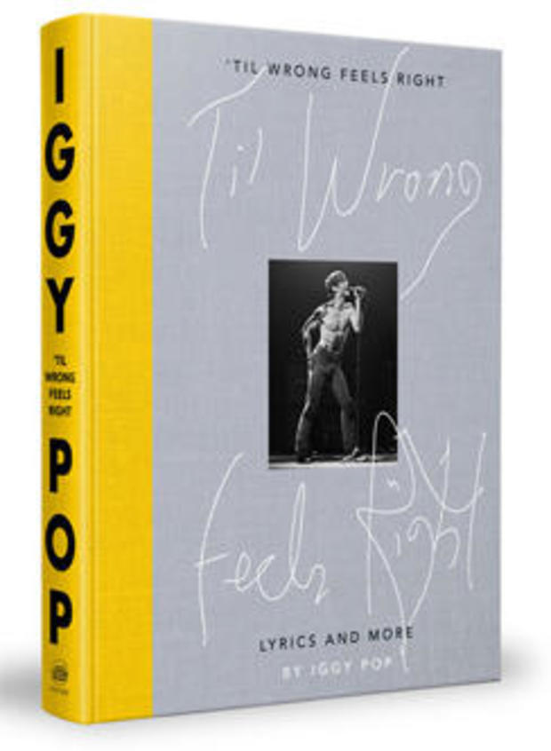 til-wrong-feels-right-iggy-pop-cover-clarkson-potter-244.jpg