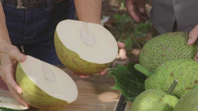 breadfruit-cut-open-promo.jpg