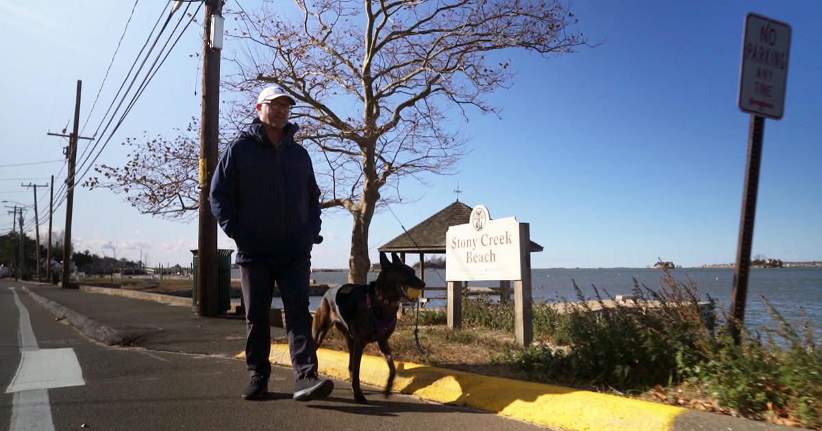 52-year-old veteran now a freshman at Yale with help from his service dog