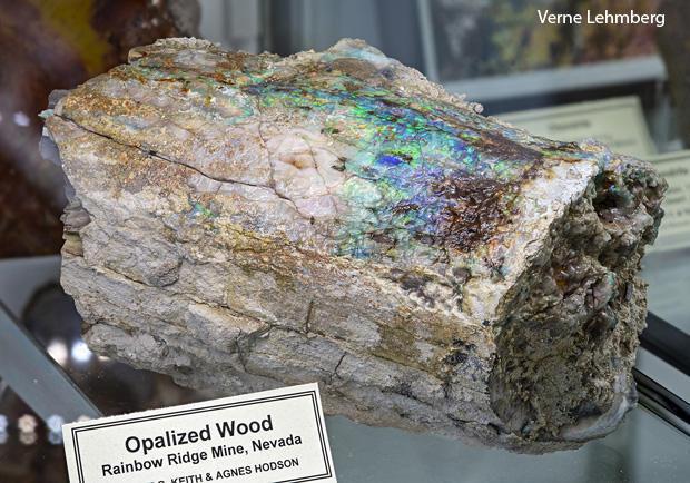 opalized-wood-verne-lehmberg-620.jpg