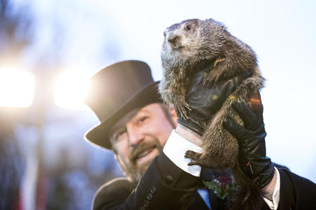 """Punxsutawney Phil"" Makes Annual Winter Prediction On Groundhog Day"