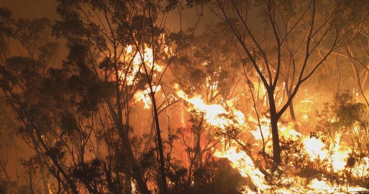Australia's bushfires show drastic effects of climate change