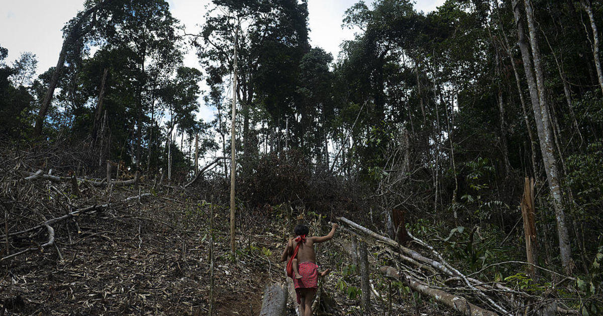 15-year-old boy from Amazon tribe dies of coronavirus