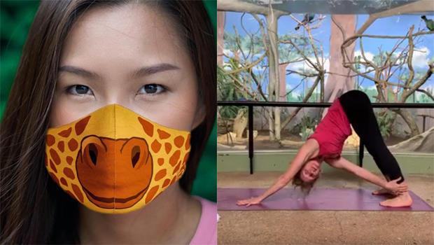 cincinnati-zoo-face-masks-san-antonio-zoo-zen-zoo-yoga.jpg