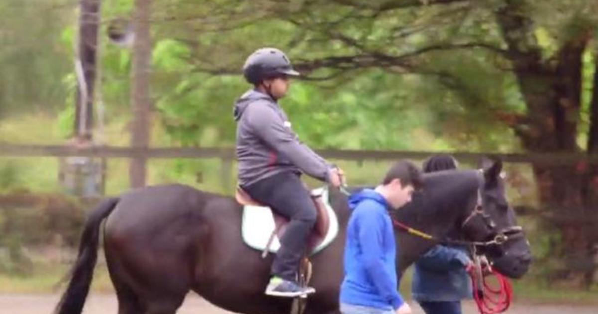 Therapeutic horseback riding program hit from pandemic