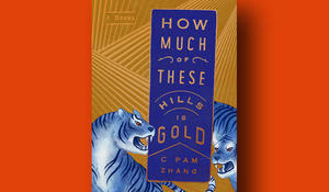 how-much-of-these-hills-is-gold-cover-riverhead-books-promo.jpg
