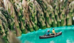 "Recreating the ""great outdoors"" in miniature"