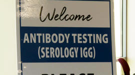 What to know before getting a COVID-19 antibody test