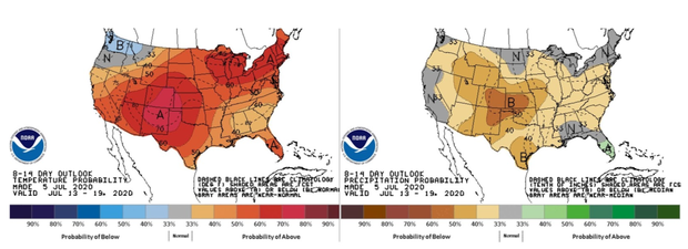 temp-and-precipitation-outlook.png