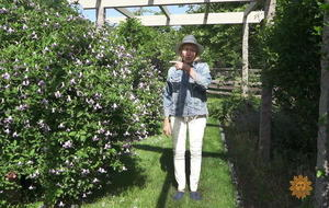 martha-stewart-flower-garden1920-513001-640x360.jpg