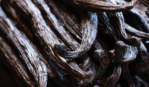 The flavorful story of vanilla