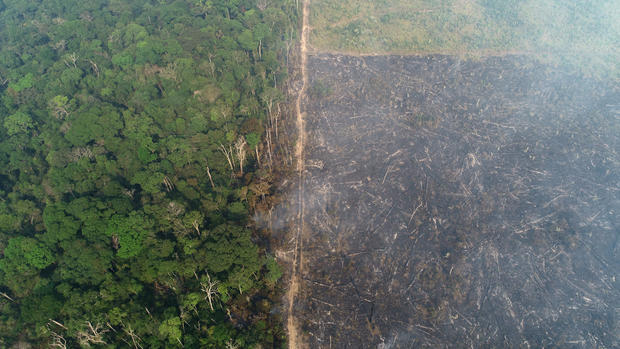 General view of a tract of the Amazon jungle which burns as it is cleared by loggers and farmers near Apui