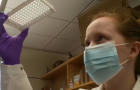 salivadirect-covid-test.jpg