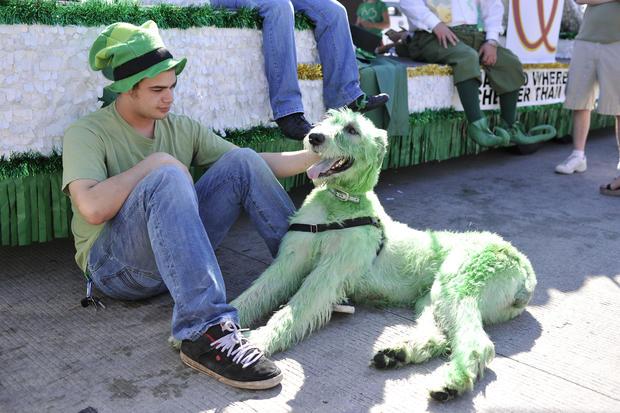 Chicago Celebrates St. Patricks Day
