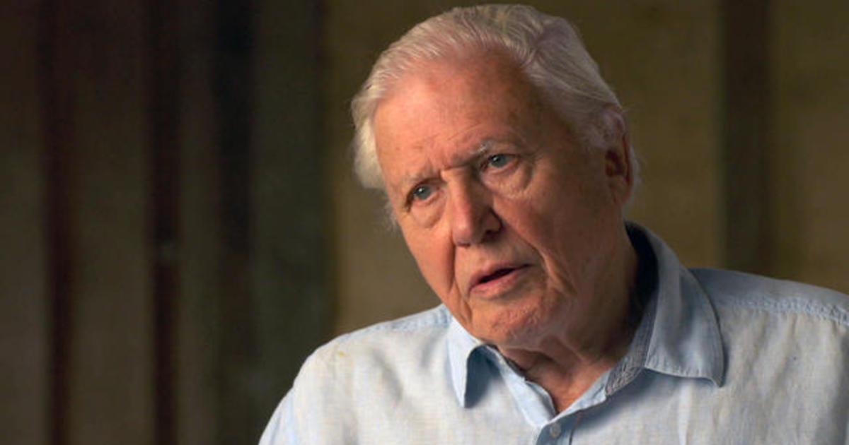 Sir David Attenborough: The 60 Minutes Interview