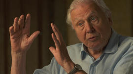"""Sir David Attenborough on climate change: """"A crime has been committed"""""""
