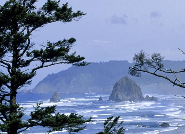 USA, Oregon Coast, Oswald West State Park, View Of Haystack