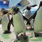GERMANY-ANIMALS-PENGUIN