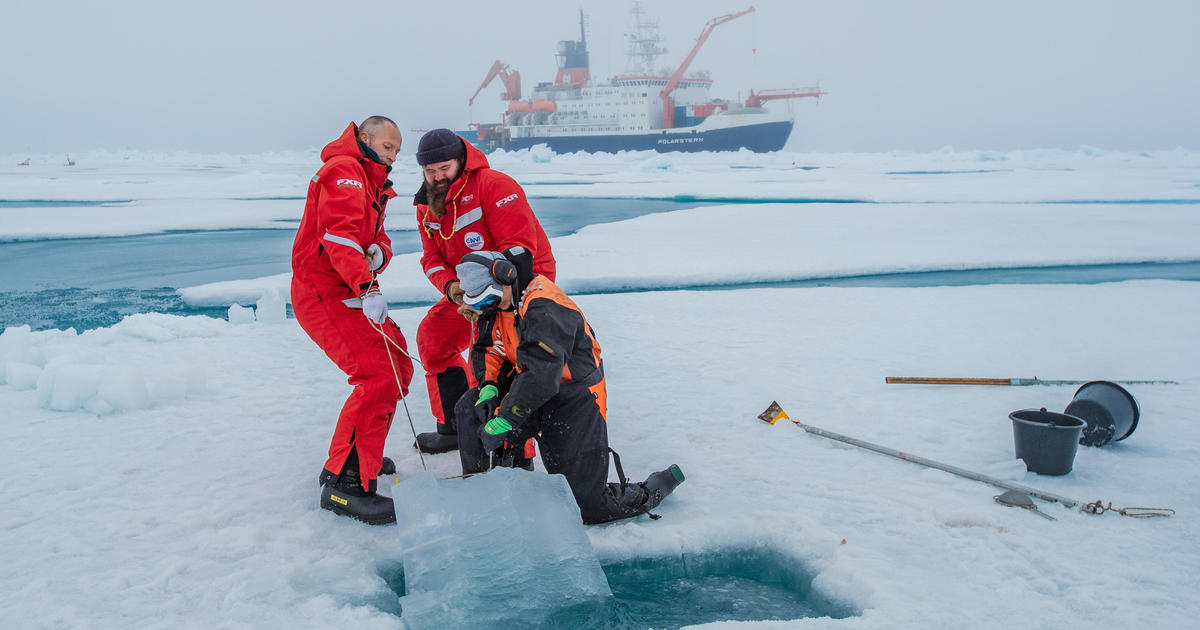 """Take action"" or face a grim future, warns climate scientist after a year locked in Arctic ice"