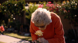 New insights from study of people age 90 and above