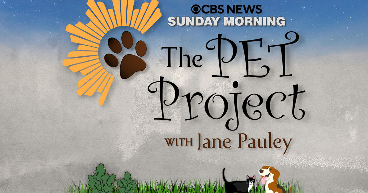`Sunday Morning` primetime: `The Pet Project` (Nov. 27)