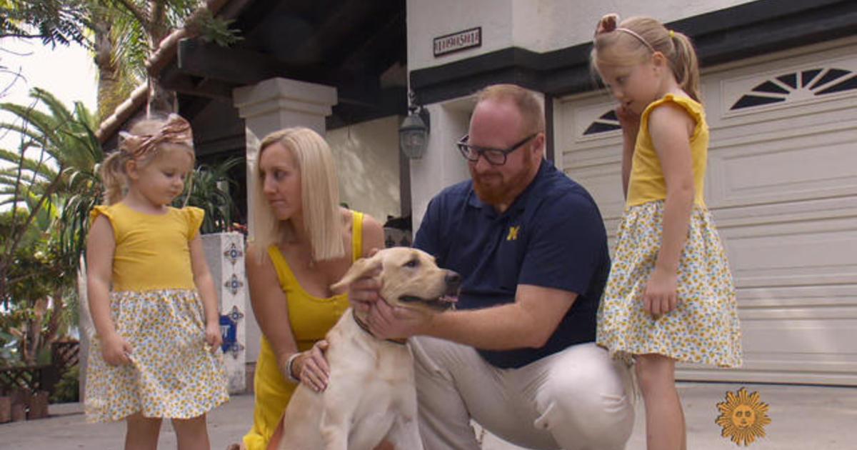 Pet cloning: Man's best friend, again