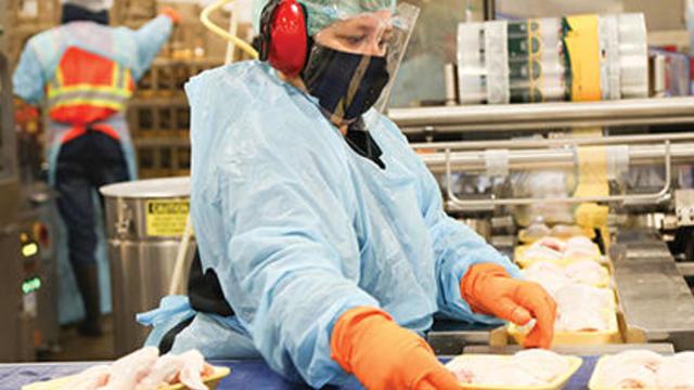 420x420-frompandemictopurpose.jpg
