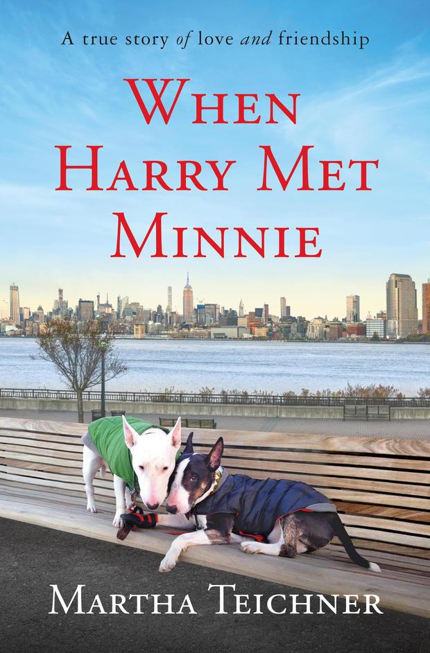 when-harry-met-minnie-cover.jpg