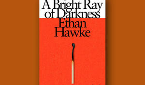 bright-ray-of-darkness-knopf-cover-660.jpg