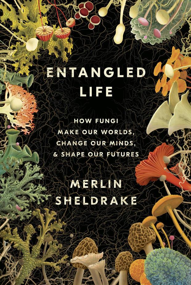 entangled-life-cover-random-house.jpg