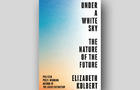 under-a-white-sky-cover-crown-660.jpg