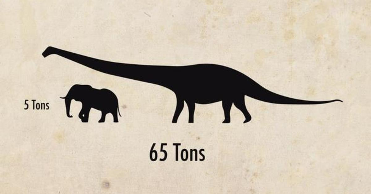 """Astoundingly huge"" dinosaur discovered"