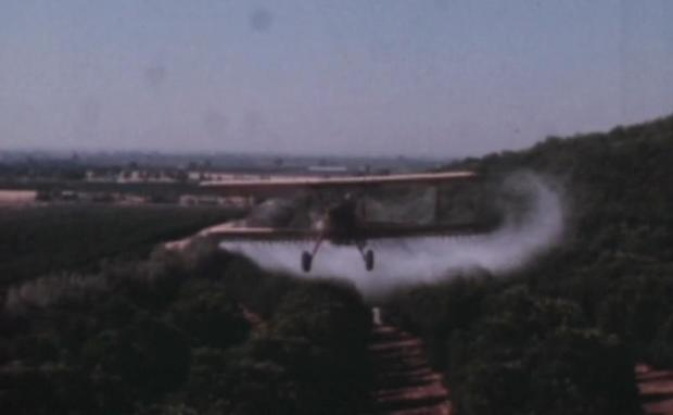 ddt-plane-2.jpg