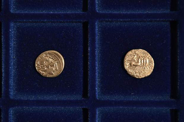 Hungarian coins discovered