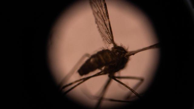 BURKINA-HEALTH-MEDICINE-MALARIA-OUTBREAK