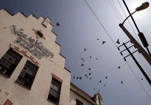 009162.ME.0526.bakery2.RG –– Pigeons flock around the abandoned Van de Kamp bakery building in Glass