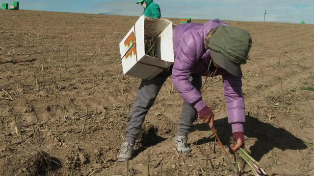 farm-workers-c-1280.jpg