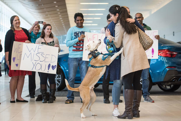 Iranian Engineer Returns To U.S. After Suspension Of Immigration Ban