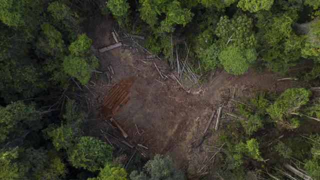 Brazil Amazon Crossroads
