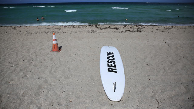 Sunny Isles Beach Is Site Of Rare Miami-Dade Shark Attack