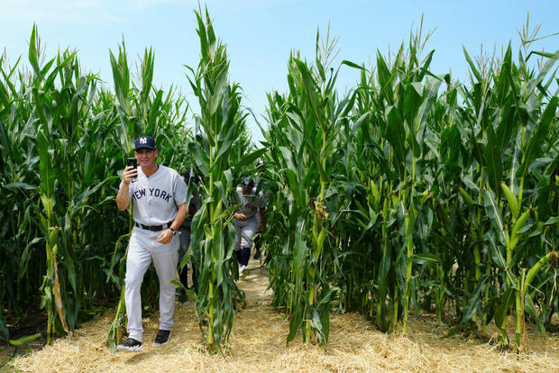 Yankees, White Sox - Field of Dreams