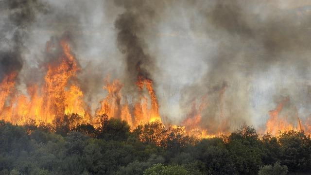 cbsn-fusion-climate-change-wildfires-extreme-weather-latest-jeff-berardelli-2021-08-12-thumbnail-770963-640x360.jpg