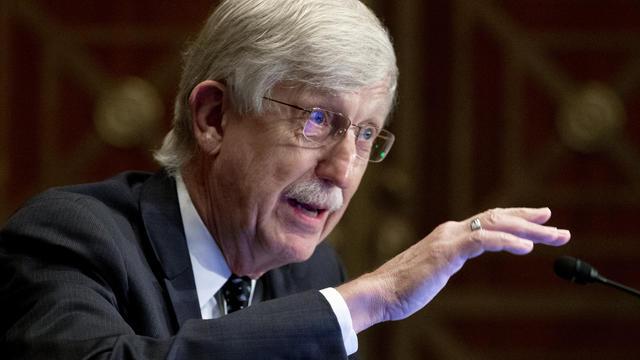 NIH Director