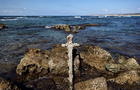 A sword believed to have belonged to a Crusader who sailed to the Holy Land almost a millennium ago was found in Caesarea