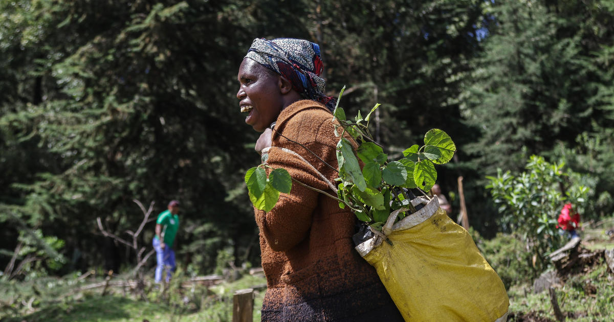 Climate change could start forcing millions of Africans out of their homes within the next 9 years, World Bank report warns